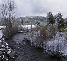 Battle Creek  by Jamie Peterson