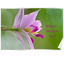 Mother's Day Orchid Poster