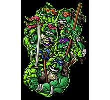 Teenaged Mutant Ninja Turtles Photographic Print