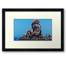 Jumping Rock Framed Print