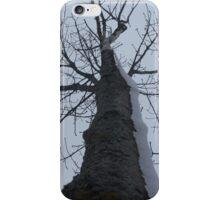 Winter's Arm iPhone Case/Skin