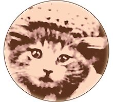 Kitty Gal Photographic Print