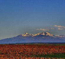Pearl, Utah by SHickman