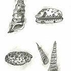 5 Shells by SharonAHenson