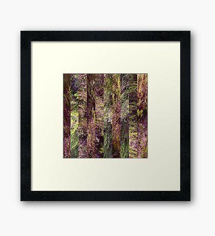 Super Natural No.5 Framed Print