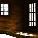 Shadows at The Fabyan Boat House by Brian Gaynor