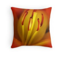 For That Is Where The Stars Shine Brightest .... Throw Pillow