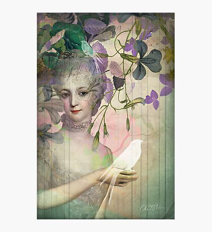 Antoinette Photographic Print