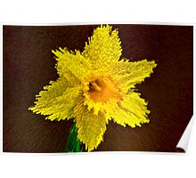 Way of the exploding daffodil Poster