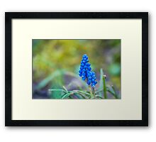 Blue Magic Framed Print