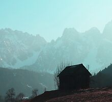 Shack in austrian mountains by ak4e