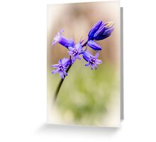 Bluebell art Greeting Card