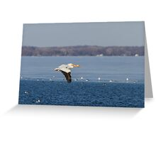 Pelican Flying Into Open Water Greeting Card