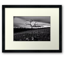 Hauntingly Beautiful~Dedicated to Shantel and Maree Cardinale Framed Print