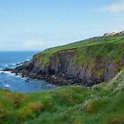 Down to the Sea, Dingle Peninsula Ireland by Gail S. Haile