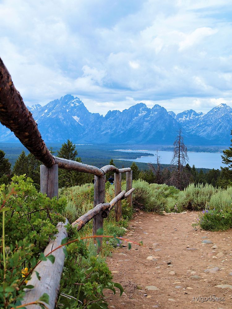 Path To The Tetons by tvlgoddess