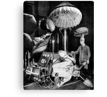 Mushroom Mania. Canvas Print