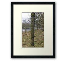 the scottish totem pole Framed Print