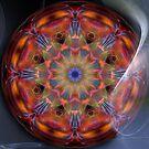 Mandala 41 by Karl Eschenbach