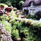 A cottage at Buckland-in-the-Moor......Devon, UK. by Roy  Massicks