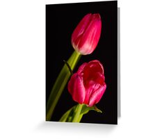 tulip red green black Greeting Card