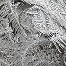 Window Frost by kenspics