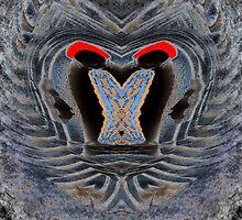 Devil Eyes by Irfan Gillani