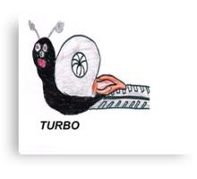 Turbo Snail Canvas Print