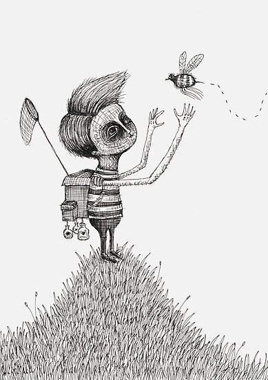 The Bug Collector by Alex G Griffiths