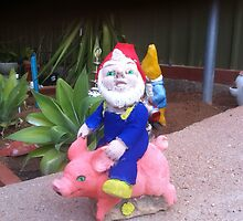 Knome Pig by Deljay
