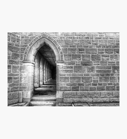 Cathedral Arches Photographic Print