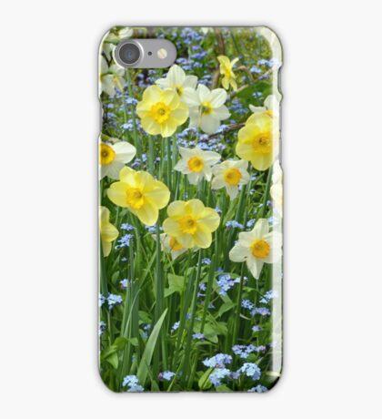 Spring daffodil garden iPhone Case/Skin
