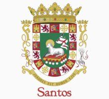 Santos Shield of Puerto Rico Kids Tee