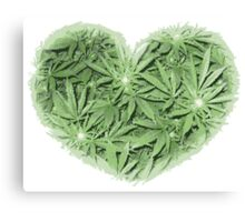 Pot Heart Canvas Print