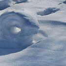 Snow Roller by Sheri Nye