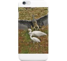 Three Herons iPhone Case/Skin