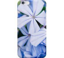Piccoli Fiori Blu iPhone Case/Skin
