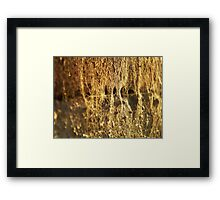 ©NS People Hidden IIIA Framed Print