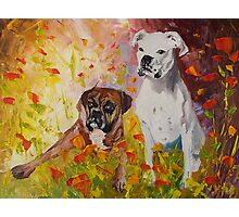 Dogs painting fine art by Ekaterina Chernova Photographic Print