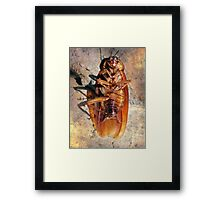 ©NS Sunbathing IIA Framed Print