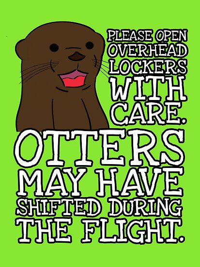 Otters may have shifted during the flight. by nimbusnought