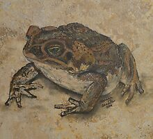Toad on a Kitchen Tile. by Monica Beadles