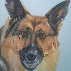 Jessie - German Shepherd Dog Commission by Anita Meistrell Putman