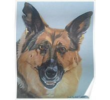 Jessie - German Shepherd Dog Commission Poster