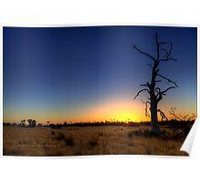 """Sunset Tree"" Poster"