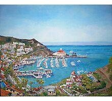 Catalina Island Photographic Print