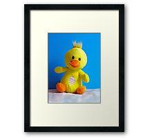 Little Chick Framed Print