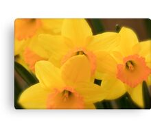 Softly Spring Canvas Print