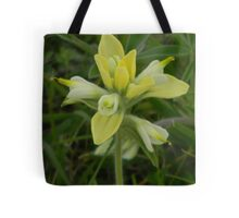 Indian Paintbrush, not quite red..... Tote Bag