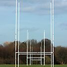 Rugby Posts by Vincent Abbey